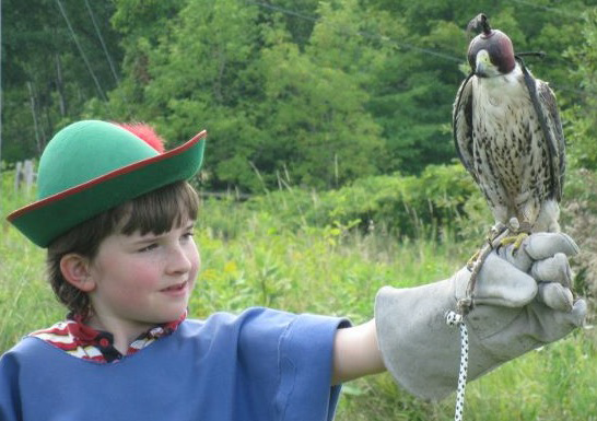 Boy with falcon